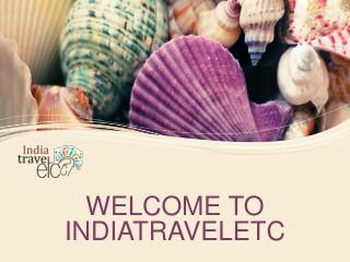 Looking For The Best Travel Agency in India?