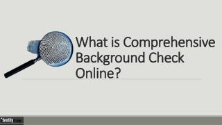 What is Comprehensive Background Check Online