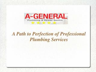 A Path to Perfection of Professional Plumbing Services