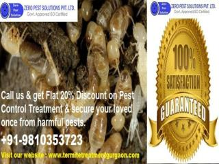 Hurry Up Get 20% Discount Termite Treatment Gurgaon | Outstanding Service