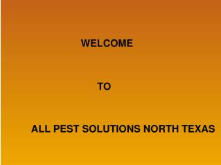 The Basics of Natural Bed Bug Pest Control
