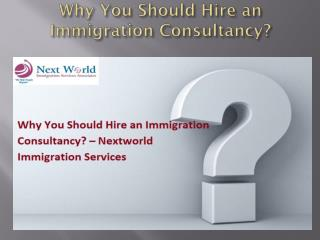 Why You Should Hire an Immigration Consultancy?