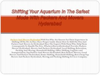 Shifting Your Aquarium In The Safest Mode With Packers And Movers Hyderabad