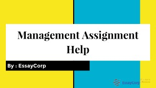 Managment Assignment Help | Management Homework Help By Experts