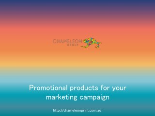 Promotional products for your marketing campaign