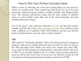 How to Pick Your Perfect Cannabis Seed