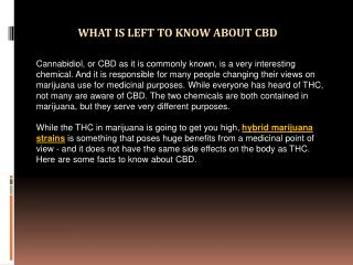 What is Left to Know about CBD