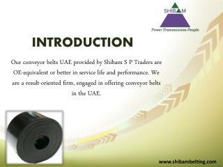 Conveyor Belts by shibambelting.com