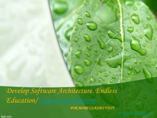 Develop Software Architecture  Endless Education/tutorialoutletdotcom