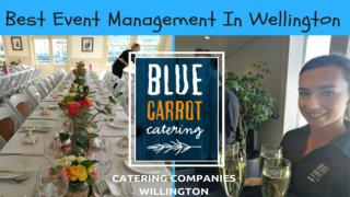 Best Event Management in Wellington - Blue Carrot Catering