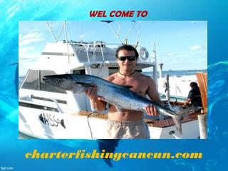 Cancun Sport Fishing and Deep Sea Fishing Tours - Cancun Fishing Charters