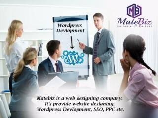 High-Experienced WordPress Website Development Company India