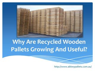 Why Are Recycled Wooden Pallets Growing And Useful?