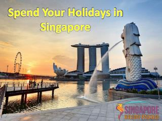 Spend Your Holidays in Singapore