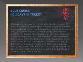 Blue cruise holidays