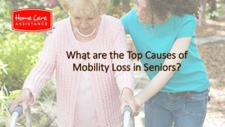 What Are the Top Causes of Mobility Loss in Seniors?