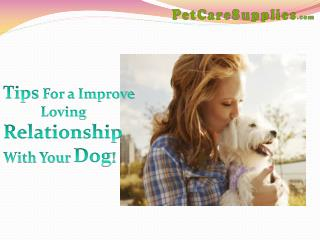 Tips For a Improve Loving Relationship with Your Dog!