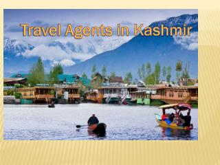 Top rated travel agents Kashmir