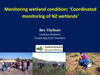 Monitoring wetland condition:  Coordinated monitoring of NZ wetlands