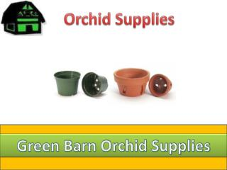 Buy Orchid Pots from Green Barn Orchid Supplies
