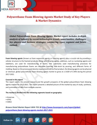 Polyurethane Foam Blowing Agents Market Study of Key Players & Market Dynamics