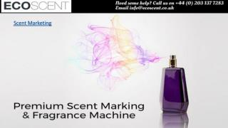 Eco Scent - World's Best Scent Marketing Manufacture and Wholesalers