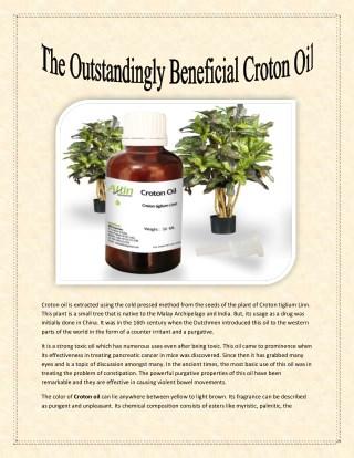 The Outstandingly Beneficial Croton Oil