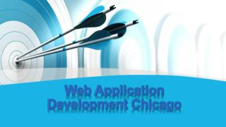 Web Application Development in Chicago