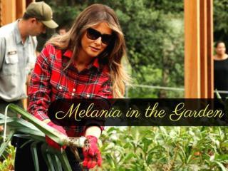 Melania Trump goes gardening