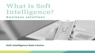What is Soft Intelligence?