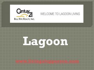 Lagoon - livingatepperson.com