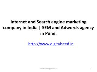 Internet Marketing Company Pune| Search Engine Marketing| Digitalseed India