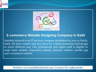 Online Ecommerce Website Designing Professional Company in Delhi/NCR