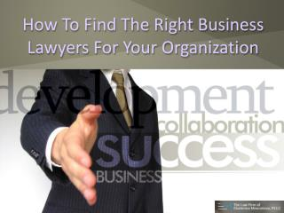 How to find the right business lawyers for your organization