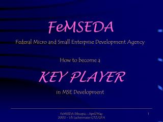 FeMSEDA Federal Micro and Small Enterprise Development Agency How to become a KEY PLAYER in MSE Development