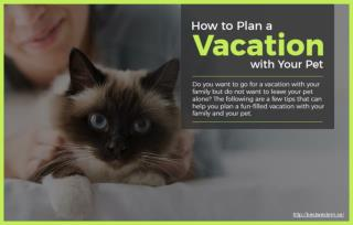 Tips for planning a vacation with your pet