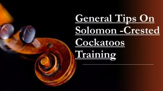 Solomon-Crested Cockatoos - General Tips On Training