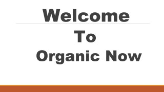 Best Organic Food Products