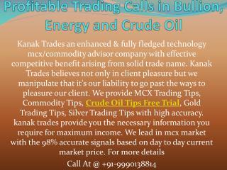 Get Daily Maximum Mcx Profitable Trading Calls in Bullion, Energy and Crude Oil