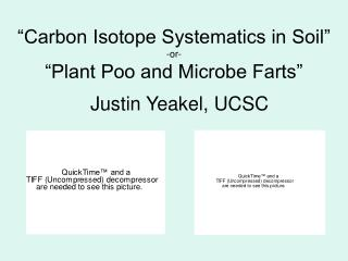 """Carbon Isotope Systematics in Soil"" -or- ""Plant Poo and Microbe Farts"""