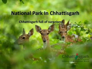 National park in Chhattisgarh ppt