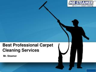 Mr.Steamer Carpet Cleaning Services