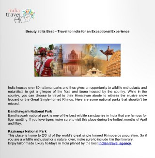 Best Travel to India for an Exceptional Experience