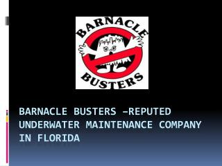 Barnacle Busters –Reputed Underwater Maintenance Company in Florida
