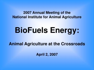 2007 Annual Meeting of the  National Institute for Animal Agriculture   BioFuels Energy:  Animal Agriculture at the Cros