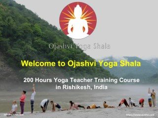 200  Hours Yoga Teacher Trainning Course in Rishikesh , India