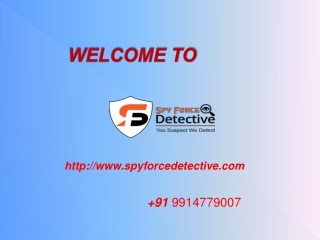 Detective Agency in Chandigarh, Punjab, Himachal   Spy force detective