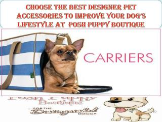 Choose the best designer pet accessories to improve your dog's lifestyle at  Posh Puppy Boutique
