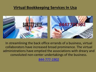 Virtual bookkeeping services in Usa