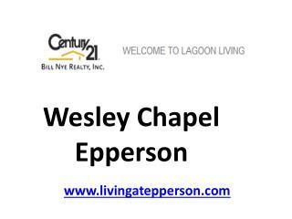 Wesley Chapel Epperson - livingatepperson.com